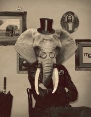 oelefant